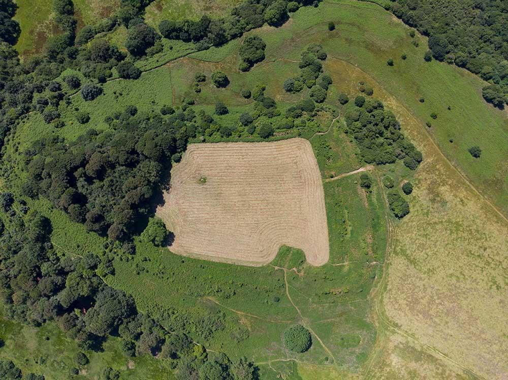 Dumpdon Hill Plan view